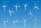 piccolo generatore di vento orizzontale 300W 12V/24V per la casa (SHJ-300S)