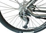 Cms-Tda02z elektrisches Fahrrad mit Aluminiumlegierung-schwanzlosem mittlerem Motor