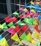 Bandierine esterne della piccola bandierina variopinta su ordinazione del triangolo per il viale eccellente
