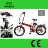 페달은 전기 접히는 자전거 En 15194를 지원했다