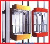 Levage panoramique d'ascenseur de forme carrée