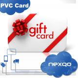Carte en plastique de cadeau de trou d'impression offset de quatre couleurs/de PVC fini mat de perforateur