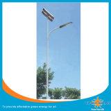 Lampe de jardin solaire à économie d'énergie (CS-SGL-101)