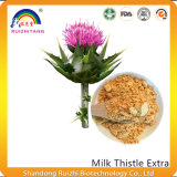 Huile extraite de chardon au lait pour le soutien du foie et antioxydant