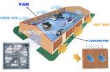 De Industriële het Ventileren van de Apparatuur van het Gevogelte van de Ventilator Ventilator met geringe geluidssterkte van de Uitlaat