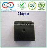 試供品の黒のエポキシのネオジムの磁石