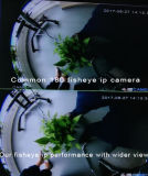 Câmera de vídeo IP iPhone Vigilância Android Fisheye de rede