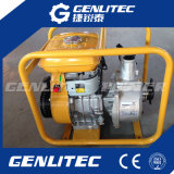 3 Benzin-Wasser-Pumpe des Zoll-Robin-Motor-Ey20-3c