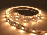 Tira flexible blanca IP65 del color LED del alto brillo GS5050-48-12