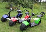 1000W adultos de grasa de neumáticos Harley Scooter eléctrico con respaldo