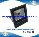 Yaye 18の高品質の低価格Ce/RoHS/ULの穂軸30W屋外LEDの洪水のライト/30W屋外の穂軸のLEDフラッドライト
