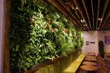 공장 가격을%s 가진 고품질 가짜 녹색 벽
