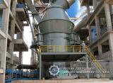 Malende Rol voor Verticale Industrie van het Cement van de Molen van de Rol