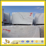 Nuovo Polished Castro White Marble per Countertop & Flooring Wall