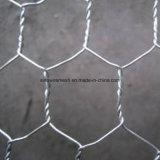 Цыплятина ограждает, мелкоячеистая сетка, шестиугольное плетение провода