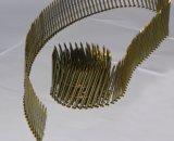 2.3*50 mm는 깔판을%s 노란 코팅을%s 가진 정강이 코일 못을 반반하게 한다