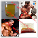 Costruzione 300mg/Ml Equipoise steroide Boldenone liquido iniettabile Undecylenate del muscolo più di alta qualità