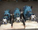 Drehvorsprung-Pumpen des Edelstahl-Ss304 Ss316L mit der Umhüllungen-Isolierung verwendet für Schokolade