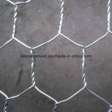 Гальванизированный, Hot-DIP покрынный цинк, PVC покрынное шестиугольное плетение провода