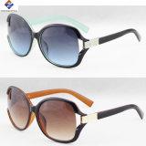 Senhora nova plástica e superior Óculos de sol da boa qualidade
