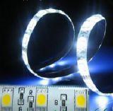 PWB LED Strip Light de la C.C. High Bright White de Two Years 24V de la garantía