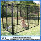 Jaula al aire libre de la perrera de la corrida de 10 x 10 perros