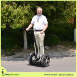 Carro eléctrico de la vespa de la vespa eléctrica de Segway