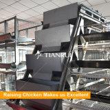 Automatique un type cages de batterie de volaille pour des couches