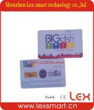 Cartões plásticos personalizados barato personalizados do PVC da sociedade
