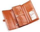 Новые бумажники Kukie0303 повелительниц прибытия