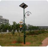 Lampe solaire de tueur d'insecte pour la mite de cancrelat de mouche de moustique de parasite d'insecte d'agriculture