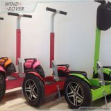Scooter de équilibrage d'individu électrique de véhicule de Rover Chine de vent