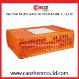 Muffa di plastica della gabbia di uccello dell'iniezione di alta qualità