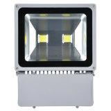 100W im Freien wasserdichtes LED Flutlicht