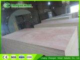Het de commerciële Fabrikant van het Triplex/Triplex van Okoume van de Berk van Kuering Bingtangor van de Ceder van het Potlood