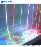RGB Lichte LEIDENE DC12V/DC24V/220V/SMD van de Strook Stroken het 5050/LEIDENE Licht van de Strook