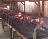炭鉱の使用された耐火性のコンベヤーベルト