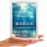Mitred Corner Graphic Snap Frame Sign Holder Poster Frame