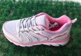 Le sport en gros d'usine chausse des chaussures de chaussures de course