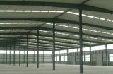 Подгонянный высоким качеством пакгауз стальной структуры