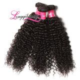 Trama indiana do cabelo Curly do Virgin direto da venda por atacado da fábrica
