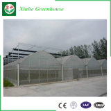 Planting를 위한 지적인 Plastic Film Greenhouse