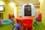 Синтетическое Turf для Kindergarten, Pets и Kids (E625218GDQ12041)