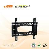 Fabrik-Großverkäufe reparierten Fernsehapparat-Wand-Montierung LCD-Montierung (CT-PLB-112)