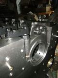 Xinchang 490 de Cilinder van de Lucht Bpj voor Motor