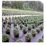 Geotextilepp. gesponnenes Weed-Steuergewebe