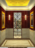 Elevador estável & padrão do elevador do passageiro com bom preço