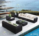 Jeux extérieurs de sofa, meubles de rotin de patio, jeux de sofa de jardin (SF-302)