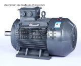moteur à courant alternatif Asynchrone triphasé du moteur électrique 160kw