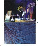 結婚式の段階のためのディスコLEDの星の白いカーテン